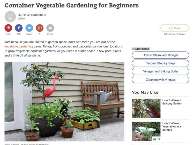 Evergreen Content for beginners