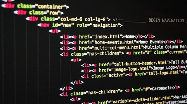 customization of business software